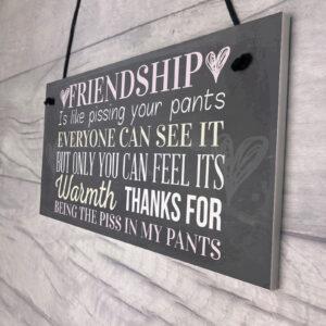 Best Friend Sign Friendship